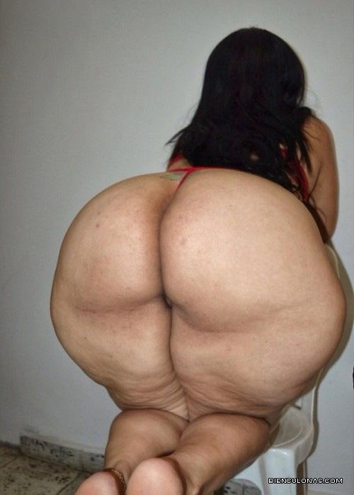 culonas gordas